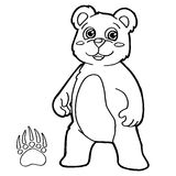 Bear with paw print Coloring Page vector Stock Image