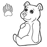 Bear with paw print Coloring Page vector Royalty Free Stock Photo