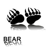 Bear paw prints stock image