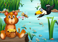 Bear and Pelican. Illustration of a bear sitting on a log with a pelican Royalty Free Stock Photo