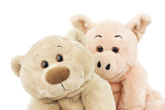 Bear and pig Stock Images