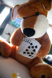Bear playing cards. In hotel room Stock Images