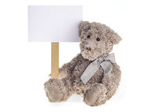 Bear plush toy isolated on white background. Sitting Teedy Bear plush toy withinformation board Royalty Free Stock Photos