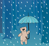 Bear in the rain. Small teddy is in the rain at the meeting, lonely walks, overcomes difficulties Stock Images