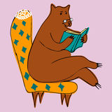 Bear reading a book Royalty Free Stock Image