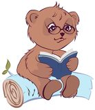 Bear reading book Stock Photography