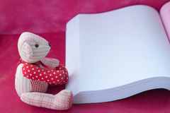 Bear reading the book Stock Photos