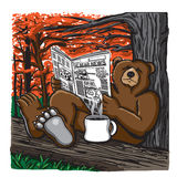 Bear reading a newspaper Stock Photography