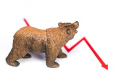 Bear with red chart on white royalty free stock images