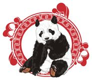 Bear and red patten. Cute panda peek up from red and white patten Royalty Free Stock Photo