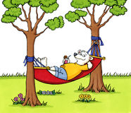 Bear relaxing in a hammock Royalty Free Stock Image