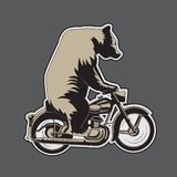Bear riding a motorcycle on a gray background. Vector illustration stock illustration