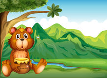 A bear in the riverbank Stock Image