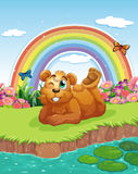 A bear at the riverbank Stock Photo