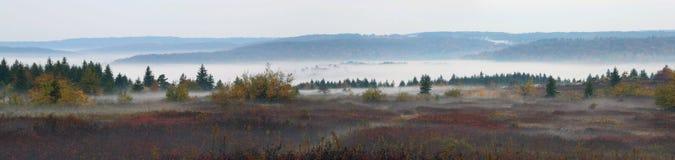 Bear Rocks Dolly Sods West Virginia. Fog on Mountain top at Bear Rocks Dolly Sods, WV Royalty Free Stock Image