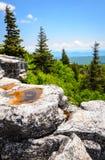 Bear Rocks Preserve Stock Image