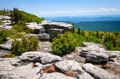 Bear Rocks Preserve Royalty Free Stock Image