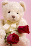 Bear with roses Stock Photos