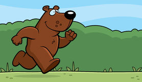 Bear Running Stock Photo