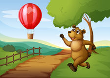 A bear running after the hot air balloon Royalty Free Stock Images