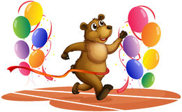 A bear running in the middle of colorful balloons Royalty Free Stock Image