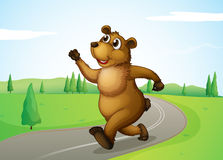 A bear running at the road Stock Photo
