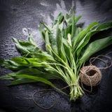 Bear's garlic Stock Photos