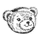 Bear's smiling snout pattern Royalty Free Stock Photo