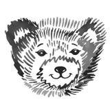 Bear's smiling snout pattern Stock Image