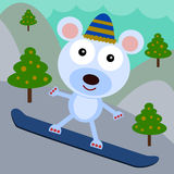 Bear's snowboard Stock Photos