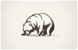 Bear. Royalty Free Stock Photos