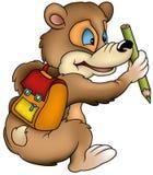 Bear Schoolboy. Colored cartoon illustration as vector Stock Image