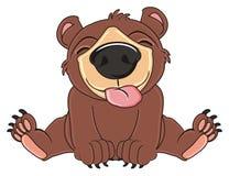 Bear show his tongue. Brow bear sit and show his pink tongue Stock Image