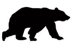 Bear silhouette Stock Photos