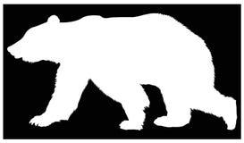 Bear silhouette - wildlife animal stock illustration