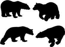 Bear silhouettes. Illustration with bear silhouettes isolated on white background Stock Photo