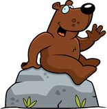 Bear Sitting Stock Photo