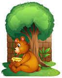 A bear sitting under a big tree Royalty Free Stock Photography