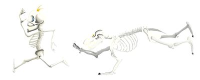 Bear skeleton try to catch a man skeleton. A bear skeleton running after a man skeleton because he is hungry Royalty Free Stock Photos