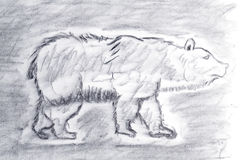 Bear Sketch drawn with charcoal. The bear sketch is painted with charcoal. Rapid sketches in grunge techniques Royalty Free Stock Photos