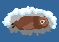 Bear sleeps in den. Grizzly asleep emotions. Wild beast dormant. Vector illustration Royalty Free Stock Images
