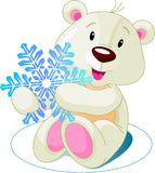 Bear_snow Stock Photography
