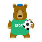 Bear with a soccer ball Stock Photo