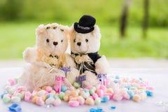 Bear soft toy for wedding decor Stock Photography