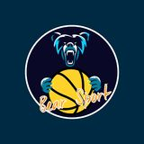 Bear sport for basketball club royalty free illustration