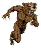 Bear sports mascot running Stock Images
