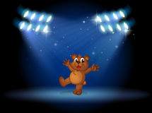 A bear with spotlights Stock Image