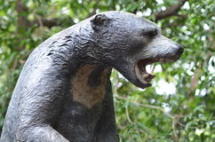Bear statue. In dusit zoo,thailand Stock Images