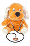 Bear with stethoscope pediatrician. Royalty Free Stock Photos