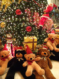 Bear stuffed in Christmas Royalty Free Stock Photos